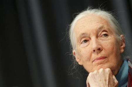 British primatologist, ethologist and anthropologist Jane Goodall listens to a journalist's question during a news conference at Vienna's Schoenbrunn Zoo June 18, 2010. REUTERS/Herwig Prammer