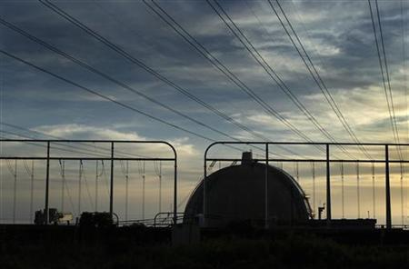 One of the reactors at the San Onofre Nuclear Generating plant is seen in North San Diego County, California March 14, 2011. REUTERS/Mike Blake