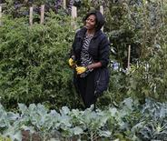 <p>Мишель Обама на огороде возле Белого дома в Вашингтоне 20 октября 2010 года. Первая леди США Мишель Обама напишет книгу об огороде на территории Белого дома, который она развела для продвижения здорового питания, сообщил издательский дом Crown в среду. REUTERS/Jason Reed</p>