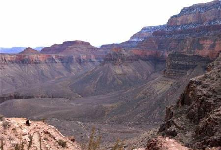 South Rim of the Grand Canyon as seen from the South Kaibab trail in this photo taken January 2, 2008. REUTERS/Rickey Rogers/Files