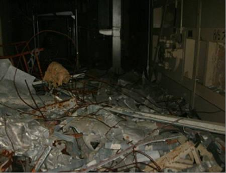 The interior of the reactor building of unit 1 at Tokyo Electric Power (TEPCO) Co.'s Fukushima Daiichi Nuclear Power Station in Fukushima prefecture is seen in this handout picture taken on May 9, 2011 released May 14, 2011. REUTERS/Tokyo Electric Power Co/Handout
