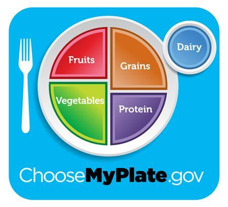 The new USDA food plate is seen in a handout image. REUTERS/USDA/Handout