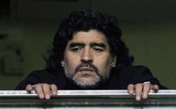 Диего Марадона на футбольном матче в Буэнос-Айресе, 12 июня 2011 года. Скандальная звезда футбола аргентинец Диего Марадона и его подруга попали в автоаварию, столкнувшись с автобусом недалеко от своего дома в Буэнос-Айресе, но остались невредимы, сообщили местные власти и СМИ. REUTERS/Marcos Brindicci