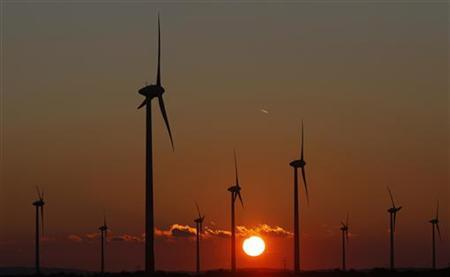 Power-generating windmill turbines are seen in Weiden, some 60 km (37 miles) east of Vienna September 5, 2010. REUTERS/Lisi Niesner