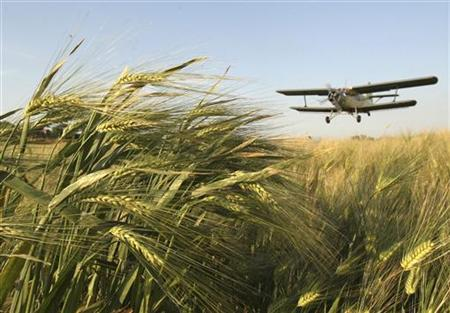 An airplane treats winter wheat crops with chemicals to kill destructive insects in a file photo. REUTERS/Kazbek Basayev