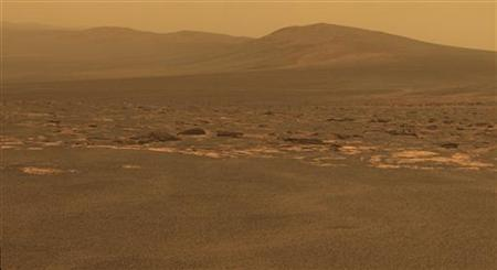 A portion of the west rim of Endeavour crater sweeps southward in this color view from NASA's Mars Exploration Rover Opportunity released by NASA August 10, 2011. REUTERS/NASA/JPL-Caltech/Cornell/ASU/Handout