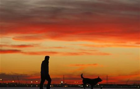 A man walks with his dog at sunset on St Kilda beach in Melbourne July 8, 2009. REUTERS/Mick Tsikas