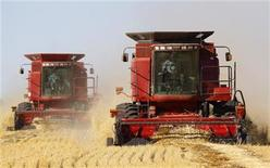 <p>The Sawyer family harvests their crop of wheat with combines near Acme, Alberta, September 23, 2009. REUTERS/Todd Korol</p>