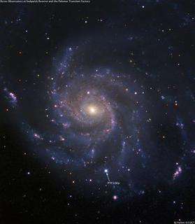 The Pinwheel Galaxy is pictured a few days ago as a supernova (PTF11kly) heads towards peak brightness. REUTERS/BJ Fulton (Las Cumbres Observatory Global Telescope) and the Palomar Transient Factor