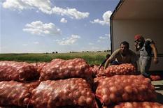 Рабочие грузят мешки с луком на ферме возле Краснодара, 7 июня 2011 года. Индекс потребительских цен в РФ не изменился за период с 27 сентября по 3 октября 2011 года, как и неделей ранее, а за первые три дня октября потребительские цены также продемонстрировали нулевую динамику, сообщил Росстат. REUTERS/Sergey Karpov