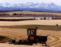 <p>Local farmer Pat Hutchinson cuts his oat crop north of Cochrane, October 18, 2002. After Hutchinson combines the crop, about 90 acres, he will complete his harvest for 2002. REUTERS/Patrick Price</p>