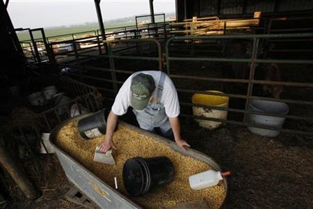 Steve Walthart, 64, scoops grain to feed his cows at his farm down the road from Independence in the bordering town of Winthrop, Iowa, July 6, 2011. REUTERS/Jessica Rinaldi