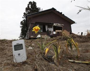 A radiation monitor, placed by a photographer, is seen next to a damaged house and flowers at a devastated area hit by earthquake and tsunami in Minamisoma, about 18 km (11 miles) from the damaged Fukushima nuclear power station in Fukushima prefecture April 11, 2011.   REUTERS/Kim Kyung-Hoon