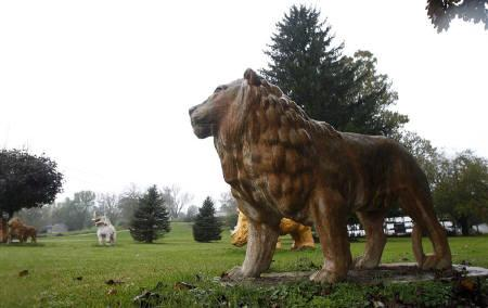 A statue of a lion sits in a yard near a property from where exotic animals escaped in Zanesville, Ohio October 19, 2011. REUTERS/Matt Sullivan