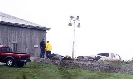 Dead animals are seen on Terry Thompson's property where exotic animals were kept in Zanesville, Ohio October 19, 2011. REUTERS/Matt Sullivan