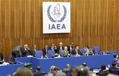 International Atomic Energy Agency (IAEA)  board of governors meeting at the UN headquarters in Vienna September 13, 2010.   REUTERS/Herwig Prammer