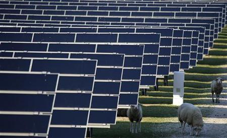 Sheep graze between the solar panels of a solar park in Waghaeusel, 20 km (12 miles) southeast of Karlsruhe, March 21, 2011.  REUTERS/Kai Pfaffenbach