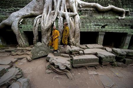 Monks stand near a tree growing out of the Ta Prohm temple, near Angkor Wat, in Siem Reap July 25, 2008.      REUTERS/Adrees Latif