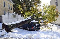 Большое дерево упало на автомобиль из-за сильного снегопада в Вустере, 30 октября 2011 г. Около 2,8 миллиона домов остались без электричества на северо-востоке США в результате сильного снегопада, унесшего жизни по крайней мере восьми человек. REUTERS/Adam Hunger