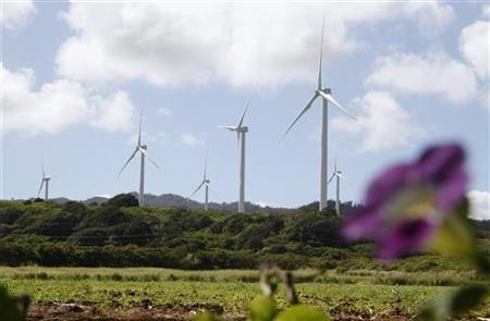 Wind turbines are seen at the Kahuku wind farm at Oahu's northshore, Hawaii November 13, 2011. Asia-Pacific leaders pledged on Sunday to pursue more trade and support clean energy to counter ''significant downside risks'' to the global economy. REUTERS/Yuriko Nakao