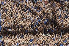 """Болельщики """"Шальке-04"""" радуются победе своей команды над менхенгладбахской """"Боруссией"""" в матче Бундеслиги в Гельзенкирхене 17 апреля 2010 года. REUTERS/Wolfgang Rattay"""