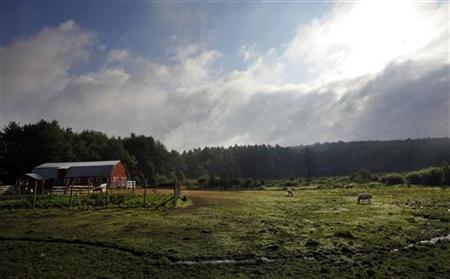 The sun rises over a farm in New Hampshire, July 7, 2011. REUTERS/Brian Snyder