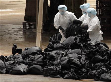 Health workers pack dead chicken at a wholesale poultry market in Hong Kong December 21, 2011. Workers began culling 17,000 chickens at a wholesale poultry market in Hong Kong on Wednesday after a dead chicken there tested positive for the deadly H5N1 avian virus, a government spokesman said.    REUTERS/Tyrone Siu