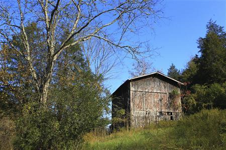 An old abandoned tobacco barn that was listed as the location of ''Gainesboro Ultimate'', a clinic that billed Medicare for more than $200,000 for the treatment of patients suffering from Severe Combined Immunodeficiency Disease, also known as ''Bubble Boy disease,'' is seen along a rural road in Gainesboro, Tennessee, October 31, 2011. Gainesboro Ultimate Med Service Corp. was paid at least $50,000 for medical treatment that supposedly took place at the barn.  REUTER/Harrison McClary