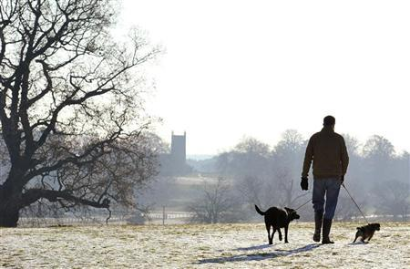 A man walks his dogs across the Royal estate at Sandringham, Norfolk in east England December 25, 2010. REUTERS/Toby Melville