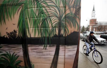 A man cycles past a tropical mural on a cold day in Burlington, Vermont, November 28, 2006. REUTERS/Brian Snyder