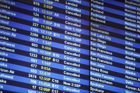 An arrivals board shows many cancelled flights at Seattle-Tacoma International Airport in Seatac, Washington January 19, 2012. REUTERS/Cliff DesPeaux