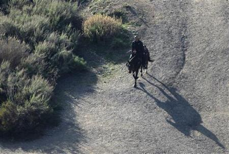 A LAPD mounted police officer searches a hilly area below the iconic Hollywood sign in Los Angeles, California January 18, 2012. REUTERS/Jonathan Alcorn
