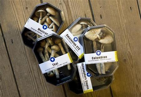 Boxes containing magic mushrooms are displayed at a coffee and smart shop in Rotterdam November 28, 2008.  REUTERS/Jerry Lampen (NETHERLANDS)