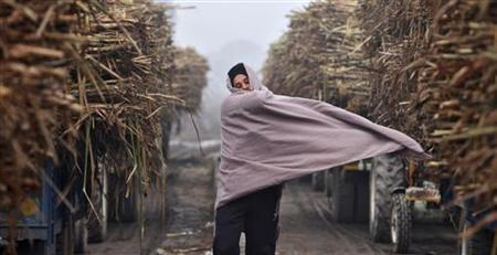 A farmer covers himself with a shawl on a cold winter day outside a sugar mill at Morinda, in Punjab January 18, 2012. REUTERS/Ajay Verma