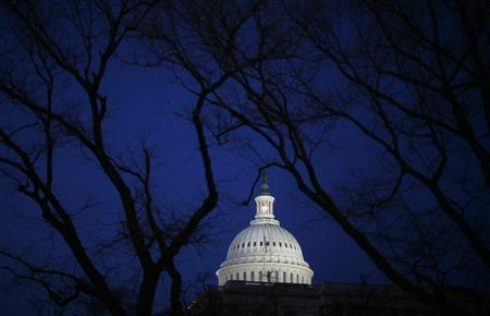 The U.S. Capitol building is seen in Washington February 24, 2009.   REUTERS/Jim Young