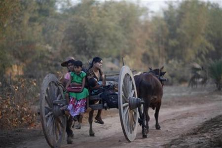 Locals travel in an ox cart in Phwartheinkha village in Kawhmu township, February 8, 2012. REUTERS/ Soe Zeya Tun