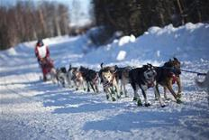Jason Barron's team charges down the trail just after the official start of the 2010 Iditarod Race in Willow, Alaska March 7, 2010.  REUTERS/Nathaniel Wilder