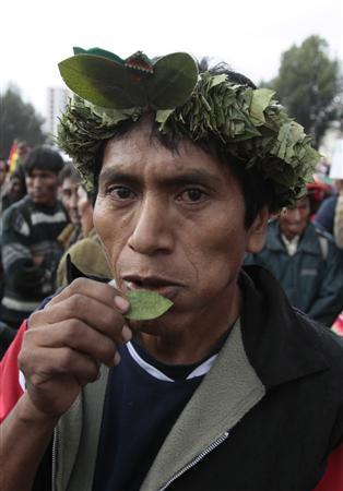 A coca grower with a crown made with coca leaves on his head chews coca leaves during a day to support chewing of coca leaves as part of an ancestral tradition in La Paz, March 12, 2012. Bolivian President Evo Morales defended Bolivians' right to chew coca leaves, the main ingredient of cocaine, on Monday, saying it was a tradition going back thousands of years and the world's No. 3 cocaine producer was working to fight drug trafficking. REUTERS/David Mercado