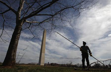 U.S. National Park Service worker Charles Jones prunes cherry trees next to the Washington Monunment on an unseasonalby warm day March 8, 2012. REUTERS/Kevin Lamarque