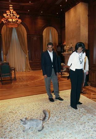 U.S. President Barack Obama (L) and first lady Michelle Obama look at Russian President Dmitry Medvedev's cat at the latter's residence Gorki outside Moscow in this July 6, 2009 file photograph. REUTERS/RIA Novosti/Kremlin/Mikhail Klimentyev/Files