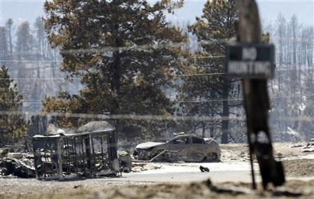 A burned car and trailer on Kuehster Road near Conifer, Colorado sits amongst burned trees March 28, 2012. REUTERS/Rick Wilking