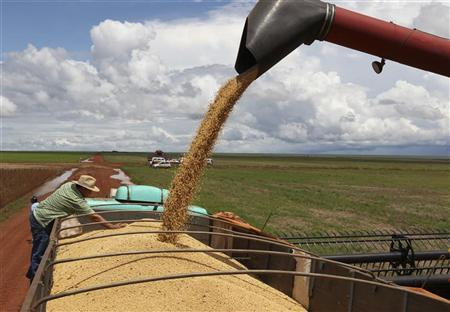 Soybeans are loaded into a truck in a farm in the city of Tangara da Serra in Cuiaba March 27, 2012. REUTERS/Paulo Whitaker