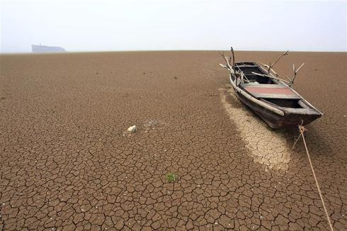 Photo focus: Parched earth