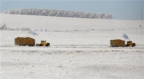 Два трактора везут сено недалеко от населенного пункта Новоселово, 14 декабря 2011 г. Российский агрохимический холдинг Фосагро сообщил, что договорился с индийской Nagarjuna о поставках 600.000 тонн фосфорных удобрений до февраля 2013 года. REUTERS/Ilya Naymushin