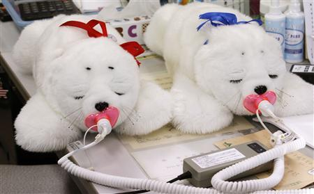 Therapeutic seal robots are plugged into their chargers at a retirement home near Iwaki in this file photo taken July 28, 2011. Baby boomers wired to their iPads and smart phones are giving U.S. health experts some new ideas about ways to cut the soaring costs of medical care in graying America. REUTERS/Kim Kyung-Hoon/Files