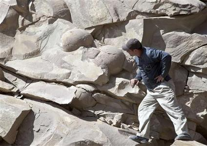 A man looks at what is believed to be fossilised dinosaur eggs at a site in Russia's volatile Chechnya region April 14, 2012. REUTERS/Yelena Fitkulina