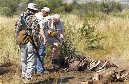 Members of the Pilanesberg National Park Anti-Poaching Unit (APU) stand guard as conservationists and police investigate the scene of a rhino poaching incident April 19, 2012. REUTERS/Mike Hutchings