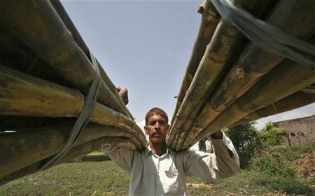 A farmer carries sugarcane from a field on the outskirts of Jammu April 9, 2012. REUTERS/Mukesh Gupta