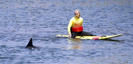 A Huntington Beach State lifeguard floats on a paddle board to assess the condition of a wayward dolphin swimming in the Bolsa Chica Wetlands in Huntington Beach California April 27, 2012. Animal rescue and Fish & Game biologists opted to leave the dolphin in the channel in hopes that it will find its way out. REUTERS/Alex Gallardo