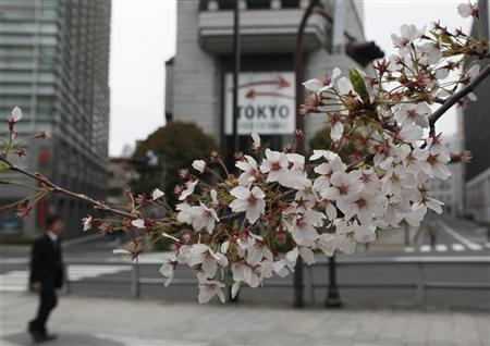 Cherry blossoms are seen in front of the Tokyo Stock Exchange building in Tokyo April 11, 2012. REUTERS/Toru Hanai